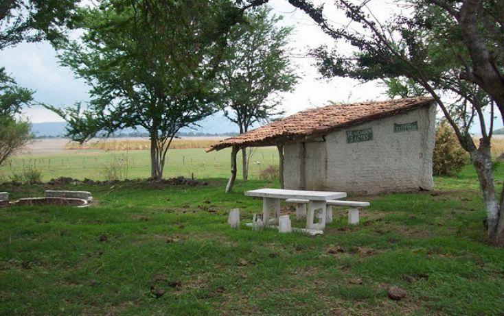 Foto de terreno habitacional en venta en, villa corona centro, villa corona, jalisco, 2045607 no 03