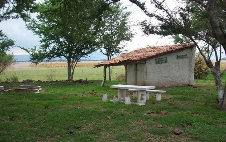 Foto de terreno habitacional en venta en  , villa corona centro, villa corona, jalisco, 2045607 No. 03