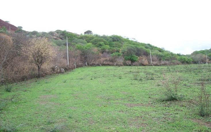 Foto de terreno habitacional en venta en  , villa corona centro, villa corona, jalisco, 2045607 No. 04