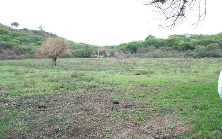Foto de terreno habitacional en venta en  , villa corona centro, villa corona, jalisco, 2045607 No. 07