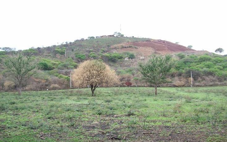 Foto de terreno habitacional en venta en  , villa corona centro, villa corona, jalisco, 2045607 No. 10