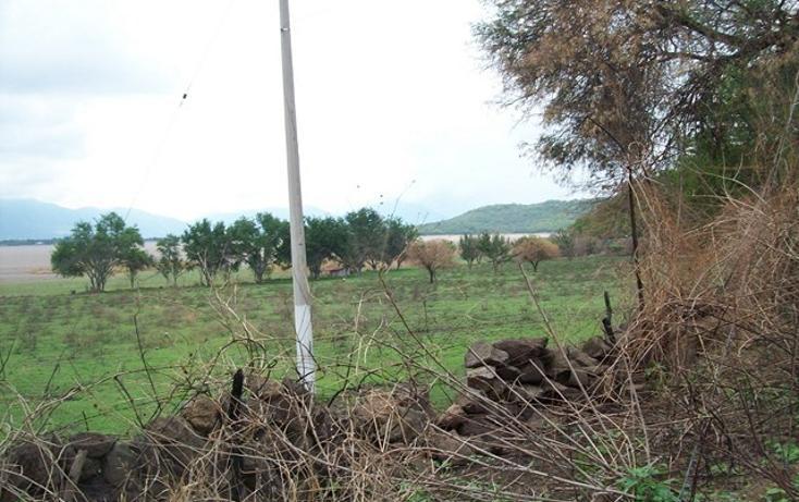 Foto de terreno habitacional en venta en  , villa corona centro, villa corona, jalisco, 2727761 No. 08