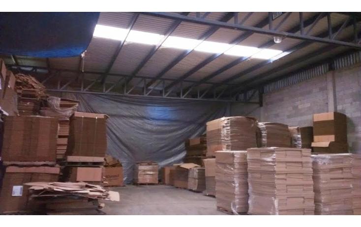 Foto de nave industrial en renta en  , villa cuauhtémoc, altamira, tamaulipas, 941739 No. 08