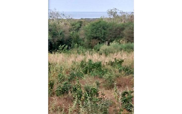 Foto de terreno habitacional en venta en  , villa del mar, cabo corrientes, jalisco, 1185727 No. 05