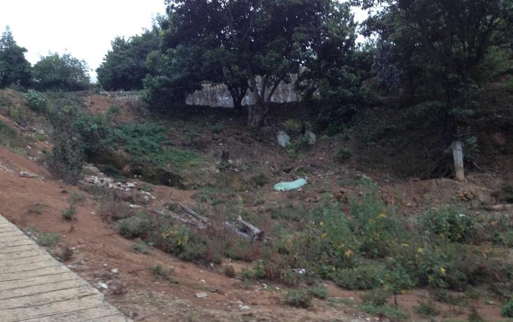 Foto de terreno comercial en venta en  , villa guerrero, villa guerrero, m?xico, 1418311 No. 08