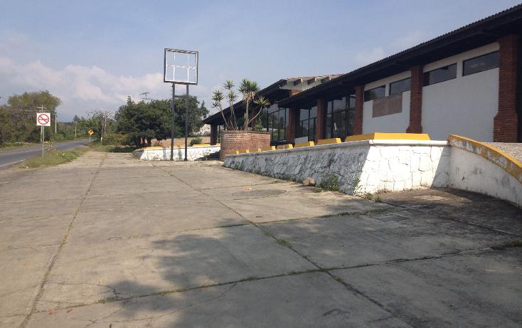 Foto de terreno comercial en venta en  , villa guerrero, villa guerrero, m?xico, 1484555 No. 05