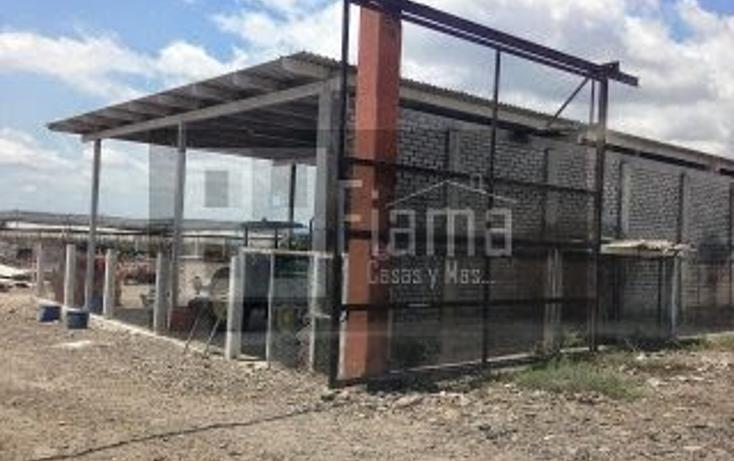 Foto de terreno habitacional en venta en  , villa hidalgo centro, santiago ixcuintla, nayarit, 1299197 No. 15