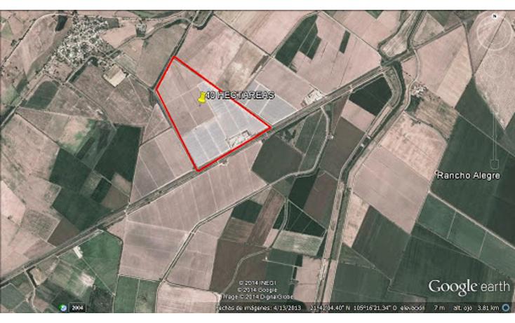 Foto de terreno habitacional en venta en  , villa hidalgo centro, santiago ixcuintla, nayarit, 1299197 No. 43