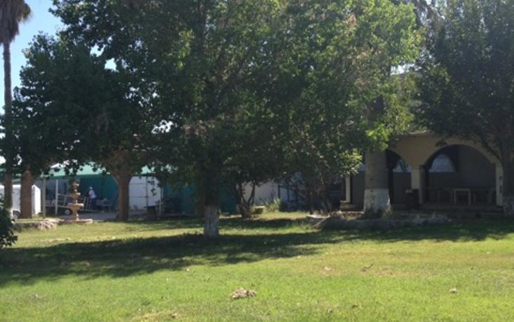 Foto de terreno comercial en venta en  , villa juárez (rancheria juárez), chihuahua, chihuahua, 1442243 No. 06