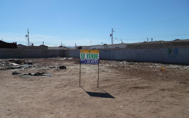 Foto de terreno comercial en venta en  , villa las lomas, mexicali, baja california, 1199455 No. 02