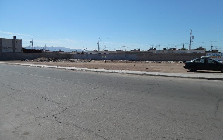 Foto de terreno comercial en venta en  , villa las lomas, mexicali, baja california, 1199455 No. 05