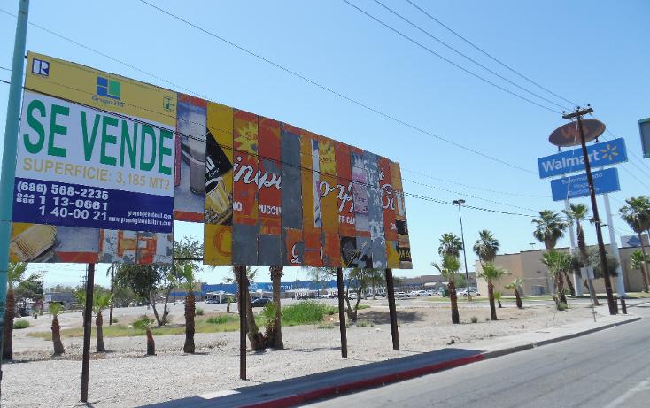 Foto de terreno comercial en venta en  , villa mediterranea, mexicali, baja california, 1118575 No. 03