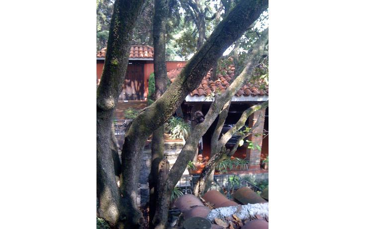 Foto de casa en venta en  , villa verdún, álvaro obregón, distrito federal, 1873400 No. 19