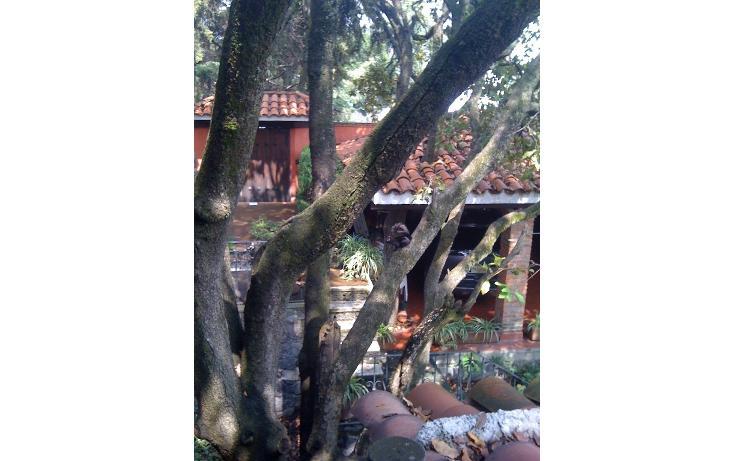 Foto de casa en venta en  , villa verdún, álvaro obregón, distrito federal, 1910105 No. 16