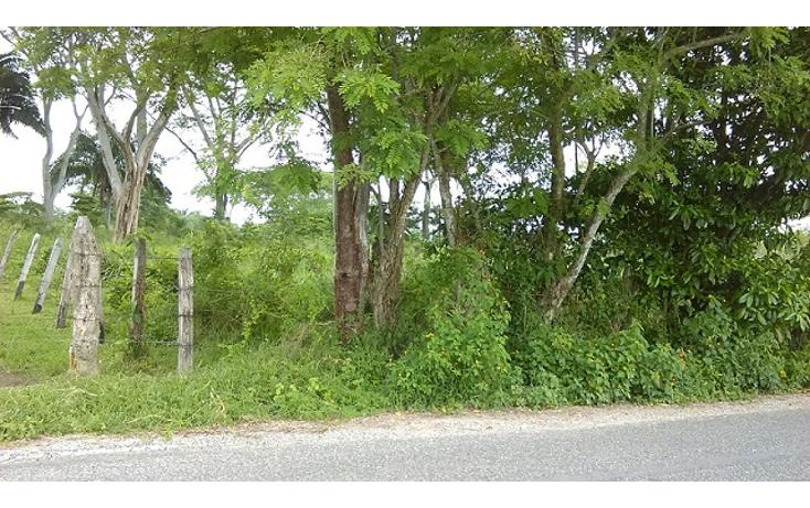 Foto de terreno habitacional en venta en  , villahermosa (cap. p. a. carlos rovirosa), centro, tabasco, 1436209 No. 02