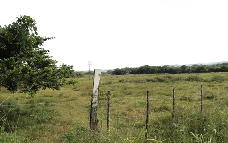 Foto de terreno habitacional en venta en  , villarin, veracruz, veracruz de ignacio de la llave, 1071743 No. 04