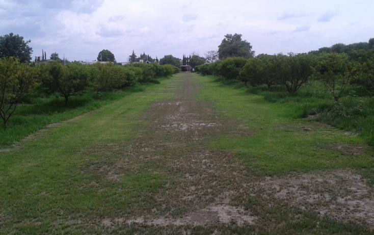 Foto de terreno habitacional en venta en  , villas campestres, tequisquiapan, querétaro, 1171705 No. 02