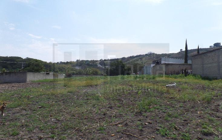 Foto de terreno habitacional en venta en  , villas de guadalupe, xalisco, nayarit, 1302633 No. 02