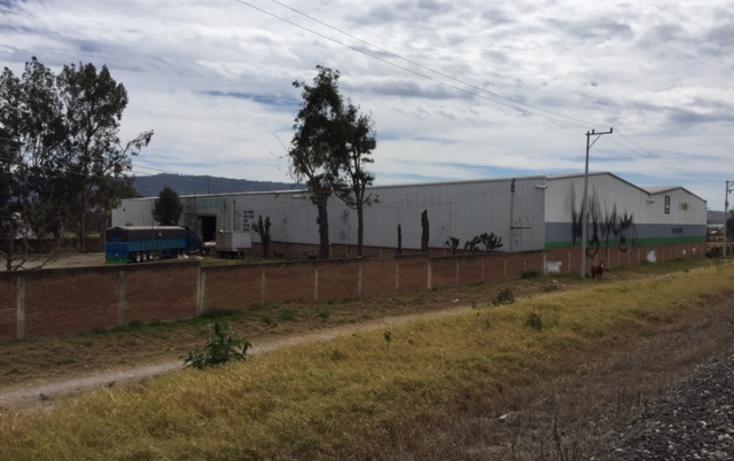 Foto de nave industrial en renta en  , villas de zapotlan, zapotlán el grande, jalisco, 2044004 No. 02
