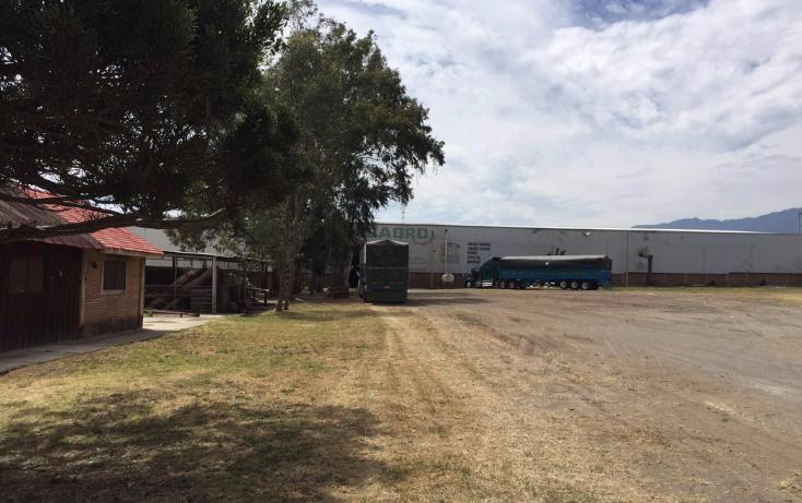 Foto de nave industrial en renta en  , villas de zapotlan, zapotlán el grande, jalisco, 2044004 No. 06