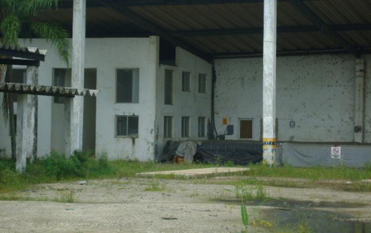 Foto de nave industrial en renta en  , villas del sur, coatzacoalcos, veracruz de ignacio de la llave, 1242311 No. 03