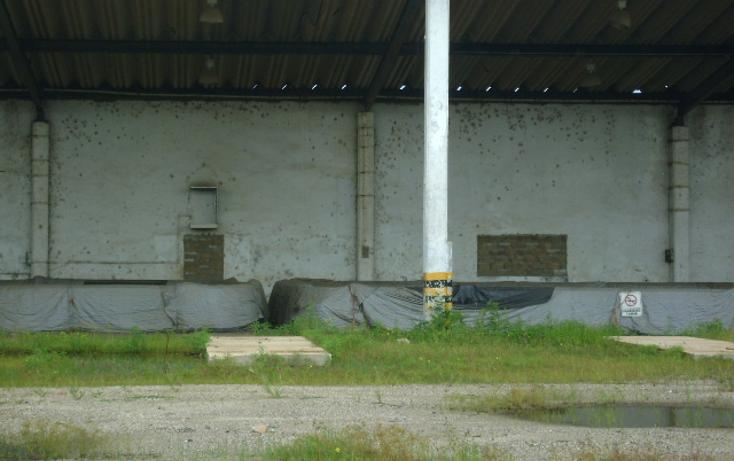 Foto de nave industrial en renta en  , villas del sur, coatzacoalcos, veracruz de ignacio de la llave, 1242311 No. 05