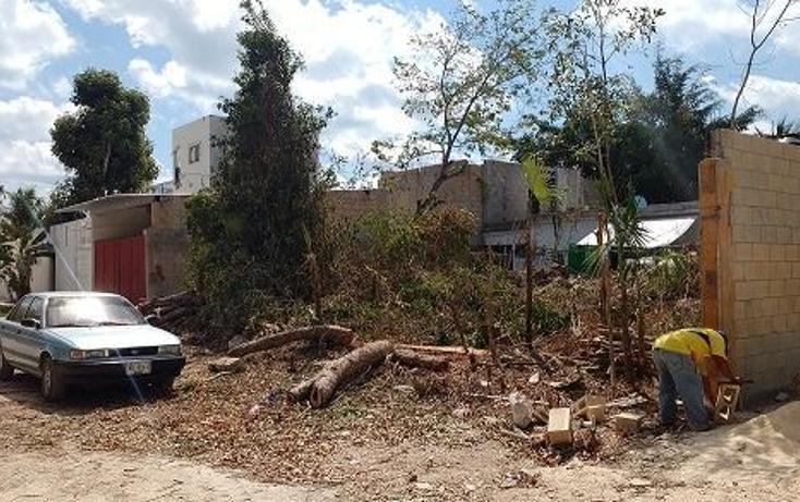 Foto de terreno habitacional en venta en  , villas tulum, tulum, quintana roo, 1277465 No. 02