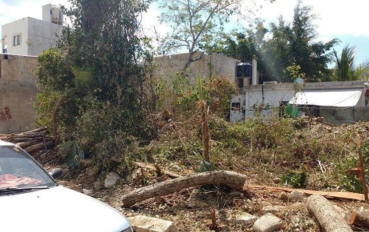 Foto de terreno habitacional en venta en  , villas tulum, tulum, quintana roo, 1277465 No. 03