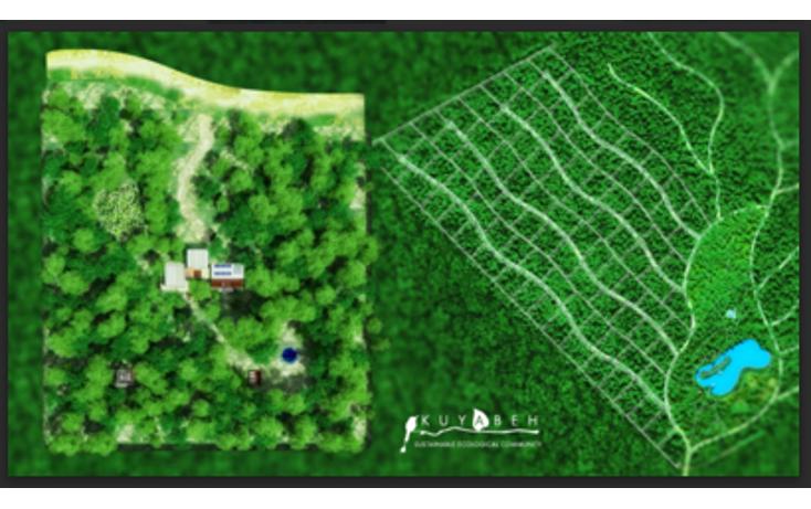 Foto de rancho en venta en  , villas tulum, tulum, quintana roo, 1475795 No. 05