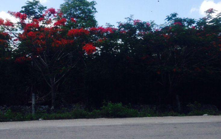 Foto de terreno comercial en venta en, villas tulum, tulum, quintana roo, 1521382 no 01
