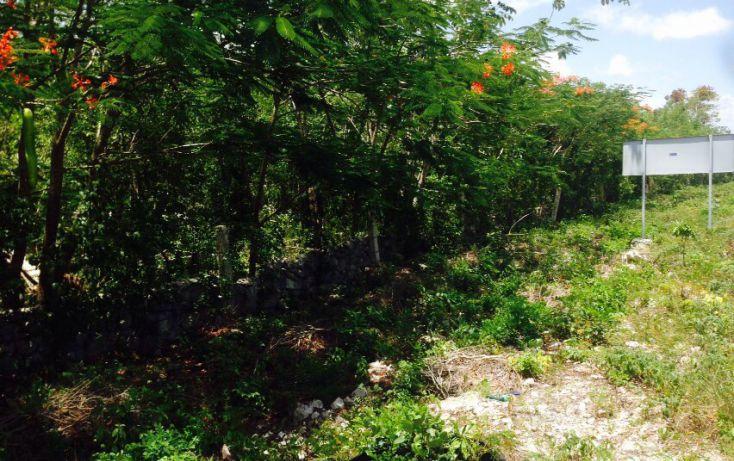 Foto de terreno comercial en venta en, villas tulum, tulum, quintana roo, 1521382 no 04