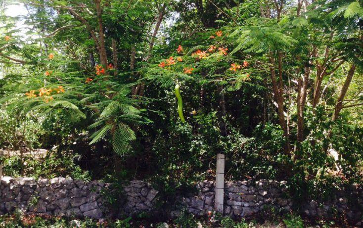 Foto de terreno comercial en venta en, villas tulum, tulum, quintana roo, 1521382 no 05
