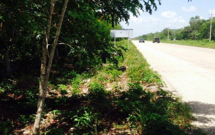 Foto de terreno comercial en venta en, villas tulum, tulum, quintana roo, 1521382 no 06