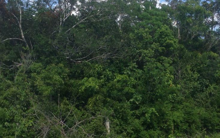 Foto de terreno comercial en venta en, villas tulum, tulum, quintana roo, 1555380 no 02