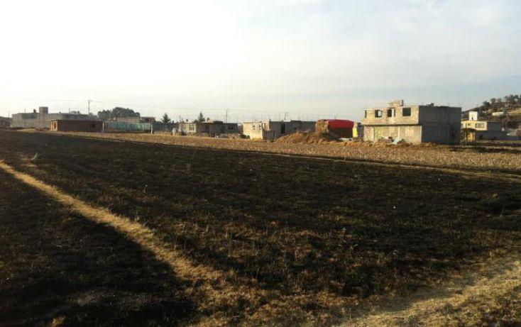 Foto de terreno habitacional en venta en vista alegre 1, san francisco tlalcilalcalpan, almoloya de juárez, estado de méxico, 1669328 no 05