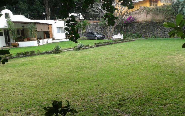 Foto de terreno habitacional en venta en  , vista hermosa, cuernavaca, morelos, 1186191 No. 03