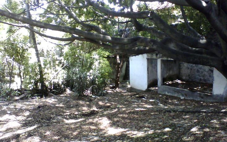 Foto de terreno habitacional en venta en  , vista hermosa, cuernavaca, morelos, 1270243 No. 02