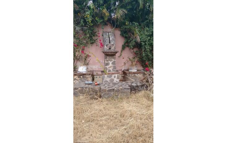 Foto de casa en renta en  , vista hermosa, cuernavaca, morelos, 1561723 No. 03