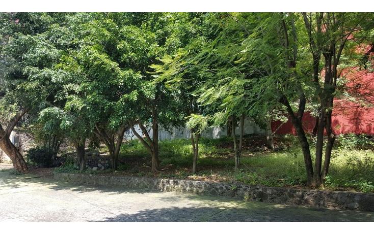Foto de casa en venta en  , vista hermosa, cuernavaca, morelos, 2010488 No. 10