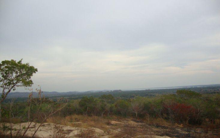 Foto de terreno habitacional en venta en vista hermosa, san marcos, cochoapa el grande, guerrero, 1701002 no 03
