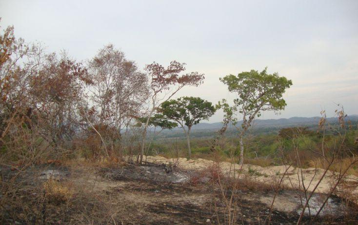 Foto de terreno habitacional en venta en vista hermosa, san marcos, cochoapa el grande, guerrero, 1701002 no 04