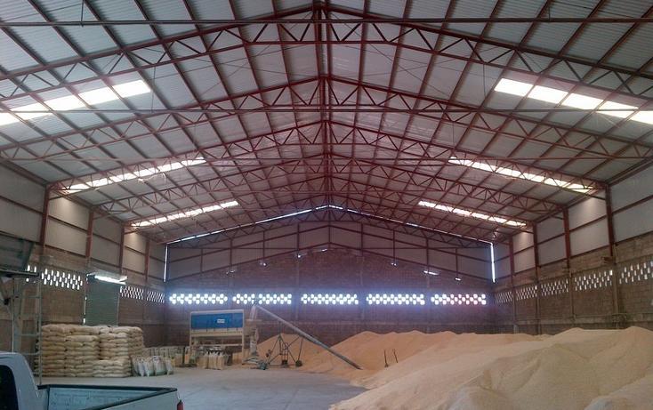 Foto de nave industrial en renta en boulevard de las islas , vista industrial, lázaro cárdenas, michoacán de ocampo, 2734655 No. 05