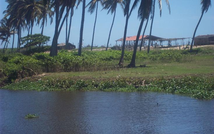 Foto de terreno habitacional en venta en  , vista mar, copala, guerrero, 1274093 No. 02
