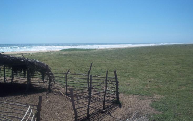 Foto de terreno habitacional en venta en  , vista mar, copala, guerrero, 1274093 No. 03