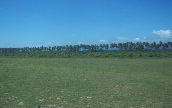 Foto de terreno habitacional en venta en  , vista mar, copala, guerrero, 1274093 No. 05