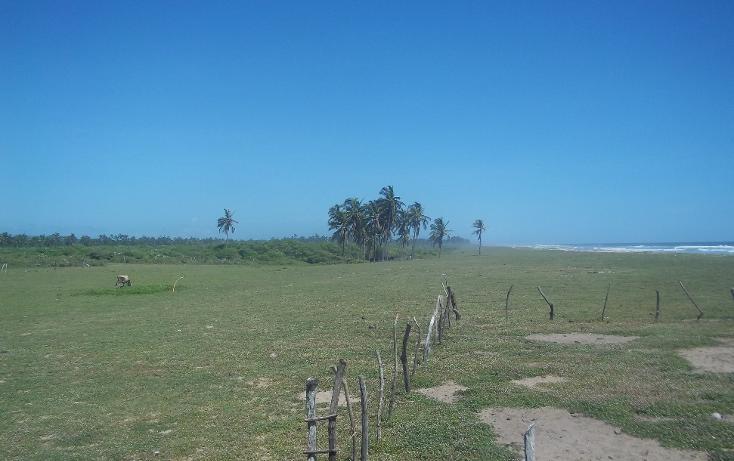 Foto de terreno habitacional en venta en  , vista mar, copala, guerrero, 1274093 No. 08