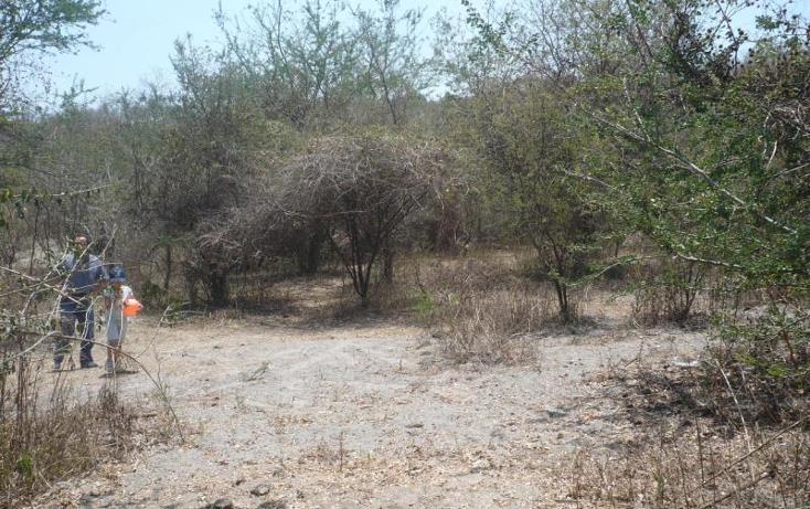 Foto de terreno habitacional en venta en barranca frio x, alpuyeca, xochitepec, morelos, 1620676 No. 02