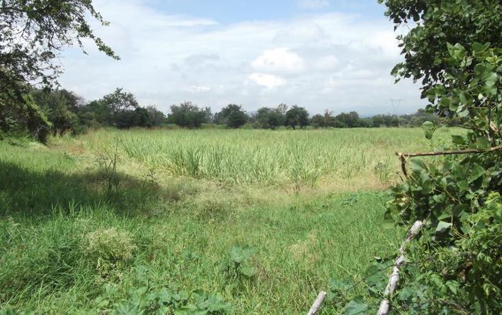 Foto de terreno habitacional en venta en x x, centro, emiliano zapata, morelos, 1034073 No. 07