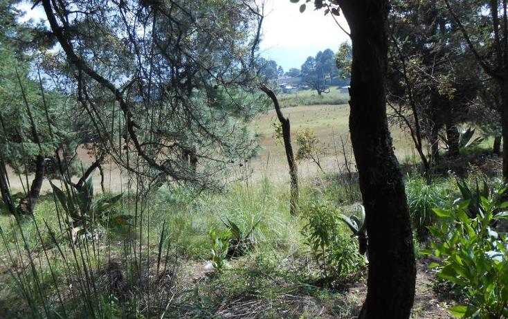 Foto de terreno habitacional en venta en  , xalatlaco, xalatlaco, méxico, 1540310 No. 04