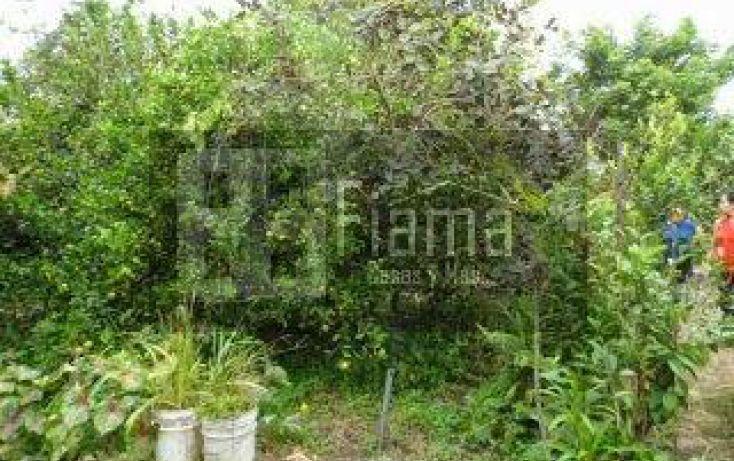 Foto de casa en venta en, xalisco centro, xalisco, nayarit, 1247523 no 07
